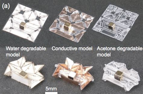 How To Make A Origami Robot - self folding mini origami robots are the nanosurgeons of
