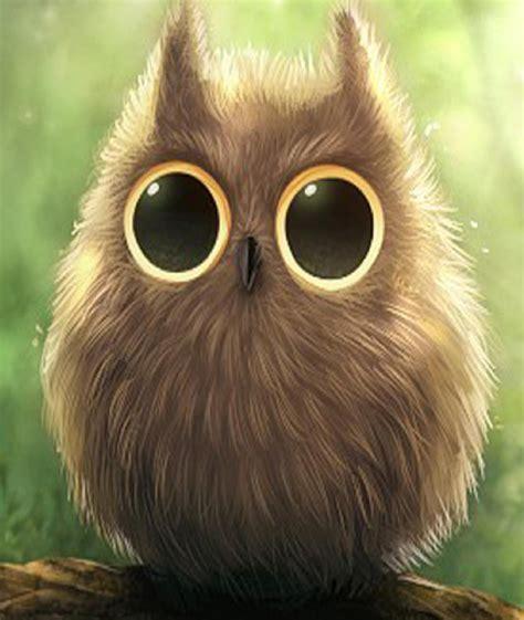 Big Eye big owl hd wallpaper 8022