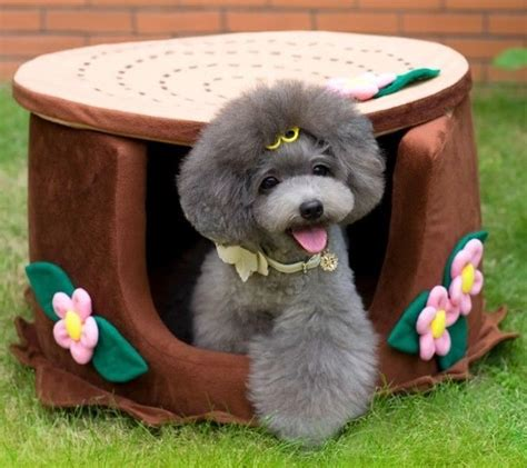 pretty dog houses new pretty tree and flower shape pet dog cat house bed 55x55x42cm brown ebay
