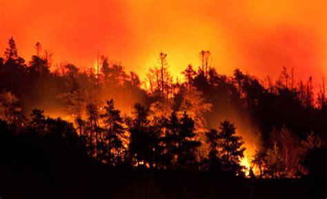 le livre des feux feux de for 234 t les 201 tats unis se dirigent vers un triste record journal de l assurance
