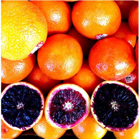 The Blood Orange moro blood oranges information recipes and facts