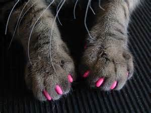 cat claw covers pink me up vinyls kittens