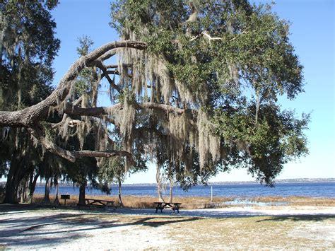 Lake Louisa State Park Cabin Rentals by Lake Louisa State Park Lance Around Orlando