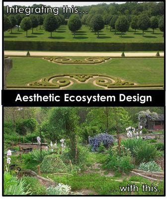 aesthetic value definition landscape beatiful landscape