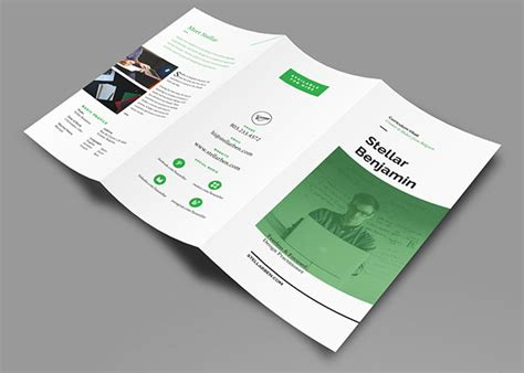 stellar tri fold resume cv on behance