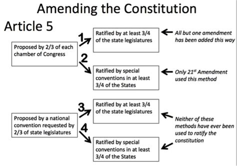 constitutional flowchart constitutional study guide