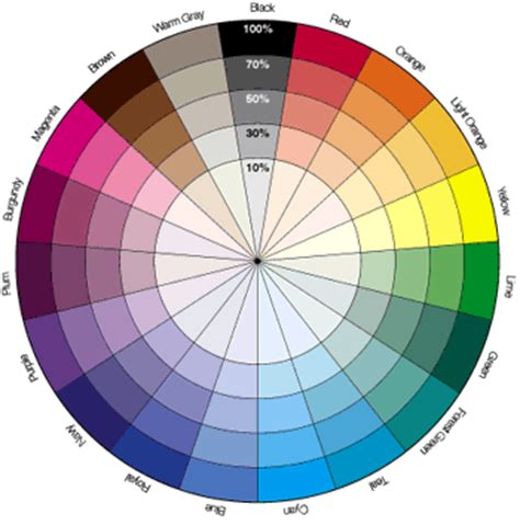 brown opposite color the color wheel beauty and bariatrics