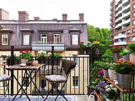 Plantes à fleurs pour le balcon  choix, entretien et