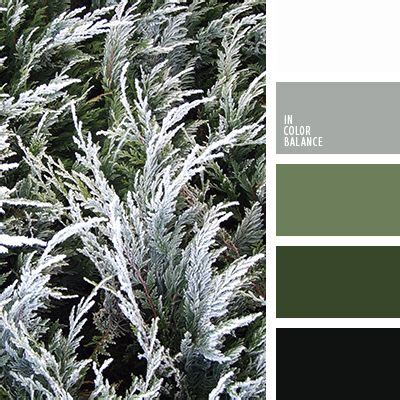1000 ideas about winter color palettes on winter colors color combinations and