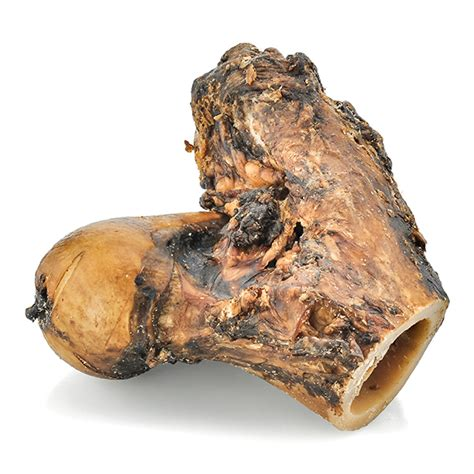 knuckle bones for dogs knuckle bone for dogs best bully sticks