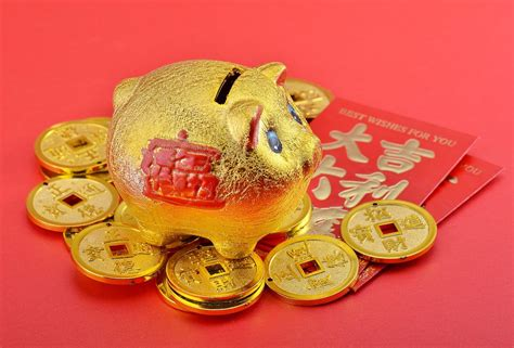 new year year of the golden pig why babies born in year of the golden pig are so lucky