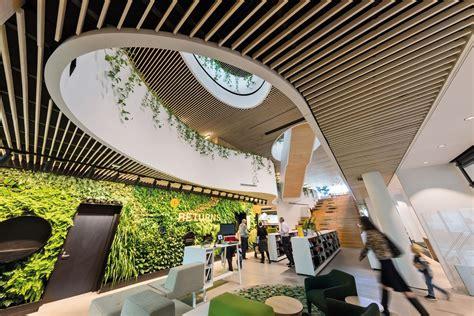 jungle book woollahra library architectureau