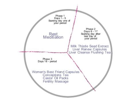 Detox Menstrual Cycle by Do You Want To Conceive Then Prepare With A Fertility