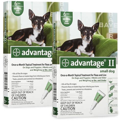 flea treatment for puppies 12 weeks 12 month advantage ii flea small for dogs 10 lbs