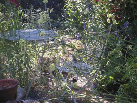 Garten Und Landschaftsbau Gummersbach by Manfred Schmitz Einrichtung Unterhalt G 228 Rten Und