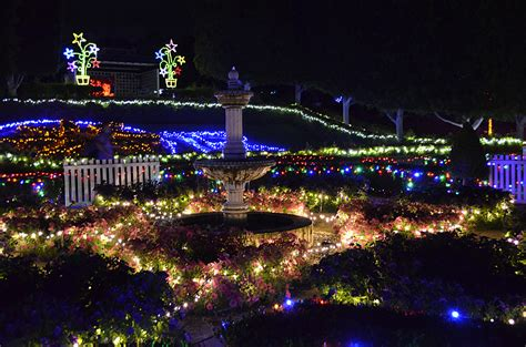 Hunter Valley Gardens Palmou Photography Valley Lights