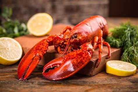 cuisine homard recettes de homard