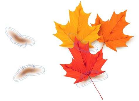 illustrator tutorial leaf how to draw a colorful autumn background with leaves in