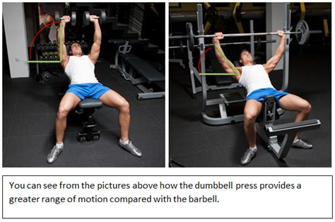 dumbbell vs barbell bench press barbell press vs dumbbell press for chest size and strength