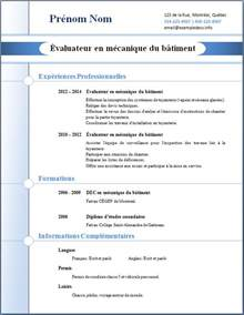 Curriculum Vitae Guidelines by Modele Un Cv Professionnel Document Online