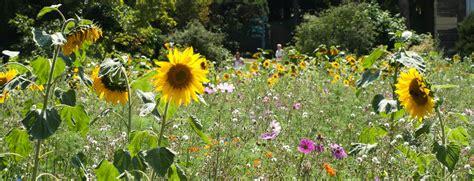 horaires tarifs et plan jardin des plantes