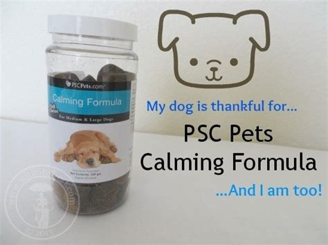 calming medicine for dogs calming medicine for anxiety with our best denver lifestyle