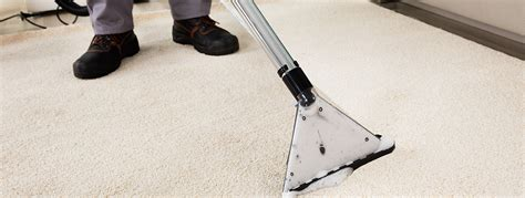 prestige carpet upholstery cleaning cleaning service ridgeley wv water sewage mold