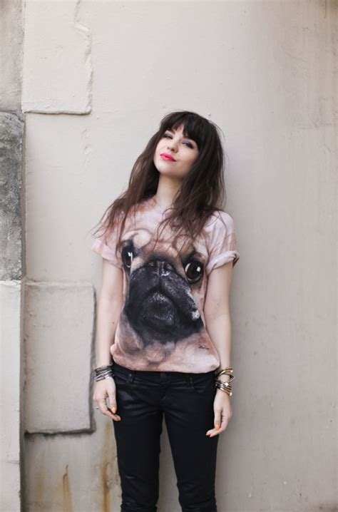the mountain pug t shirt the mountain pug t shirt beat things