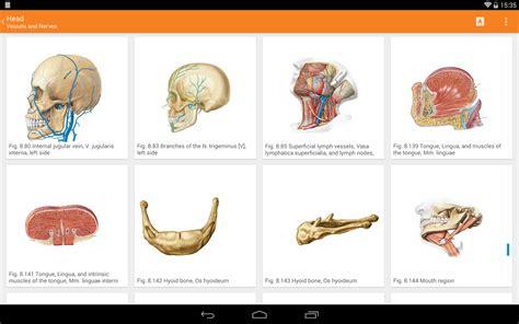 Safira Harajuku 3in1 Set sobotta atlas anatomi bilgisayar programı indir program indir programlar indir