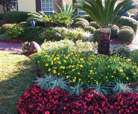florida landscaping plants tcr landscaping is tcr landscaping official web site tcr landscaping design and installs