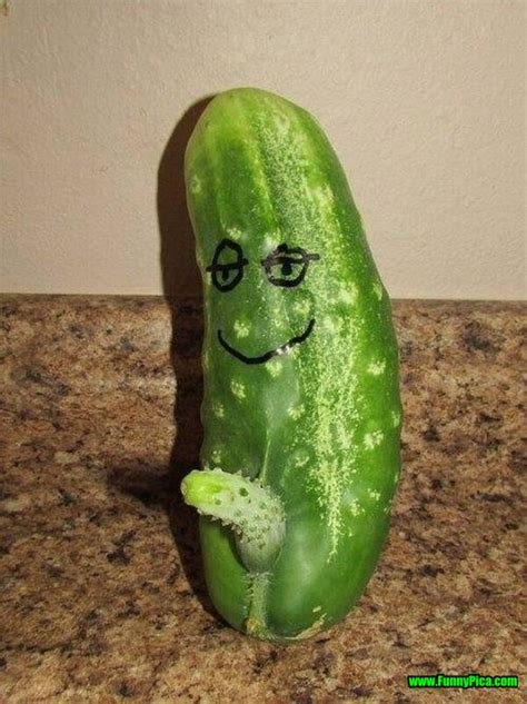 Pickle Meme - top 30 funny cucumber 25 of 30 funnypica