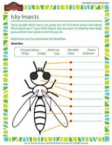 icky insects 2nd grade life science of dragons