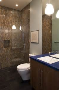 Doorless walk in shower ideas bathroom contemporary with ceiling