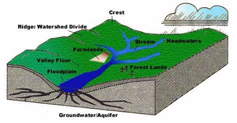 Water Shed Definition by Watershed