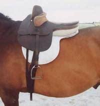 silla de montar inglesa monta a la amazona silla de montar venta de caballos