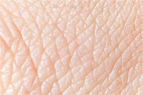 texture of human skin and scratch up macro stock photo royalty free image pele um 243 rg 227 o ou tecido do corpo humano estudo