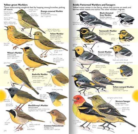 western north carolina birds identification quotes