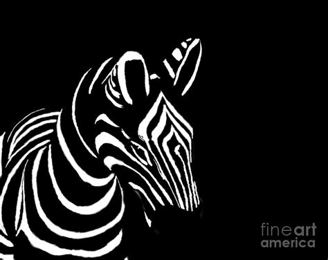black and white zebra ls zebra black and white photograph by gregory smith