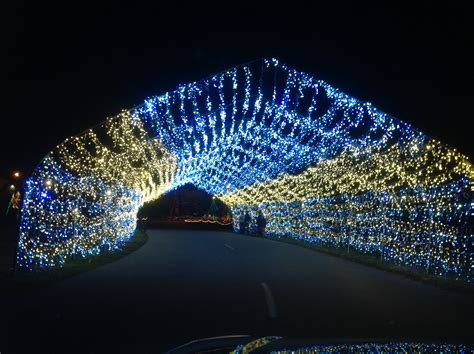 christmas lite show grand rapids michigan