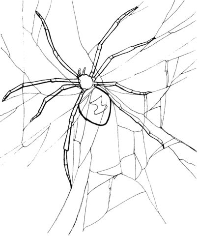 trapdoor spider coloring page spider 4 coloring page free printable coloring pages