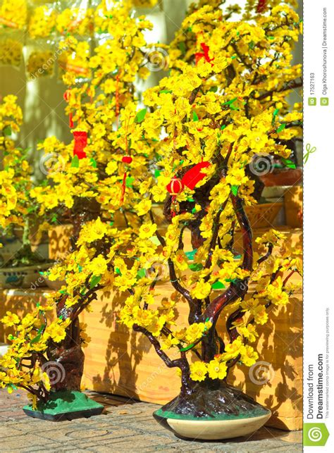 new year flower market fair flower market stock photos image 17527163