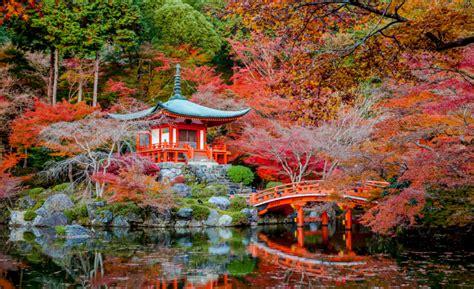 foto giardini giapponesi giardini giapponesi in italia ecco i pi 249 belli da roma a