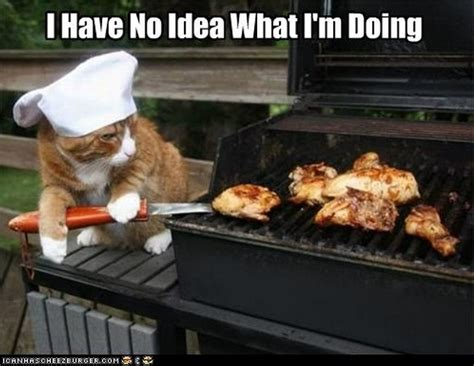 Funny Bbq Meme - meme watch i have no idea what i m doing sums up the