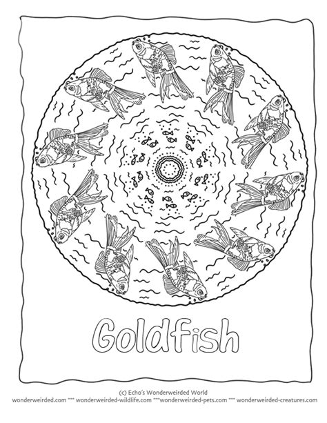 fish mandala coloring page fish mandala coloring page goldfish coloring page 3 here