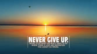the who never gave up a motivational book for 6 10 years books never give up motivational quotes like success