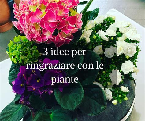 fiori per ringraziare 3 idee per ringraziare con le piante idee fiorite