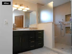 how much is a walk in bathtub home improvement