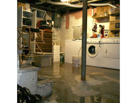 the basement company my basement flooded will my insurance company cover it do i need a adjuster