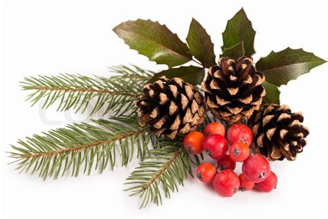 pinecone christmas border festival collections