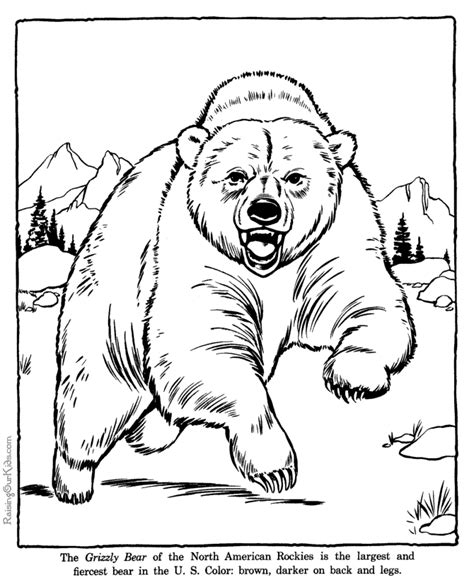 Preschool Zoo Coloring Pages Az Coloring Pages Zoo Animal Coloring Pages For Preschool